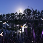 Jason D. Page Light Painting Dragonflies #4