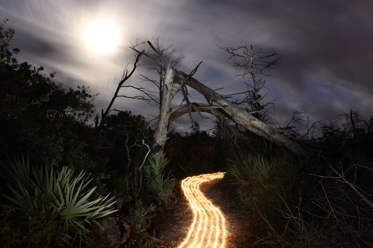 Light Painting By Jason D. Page | JASON D. PAGE